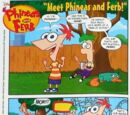 Meet Phineas and Ferb!