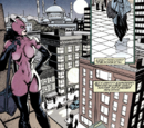 Selina Kyle (New Earth)/Images
