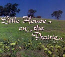 Little House on the Prairie (Television Series)