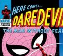 Daredevil Vol 1 17