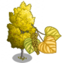 American Aspen Tree-icon.png