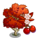 Autumn Cherry Tree-icon.png