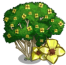 Milo Tree-icon.png