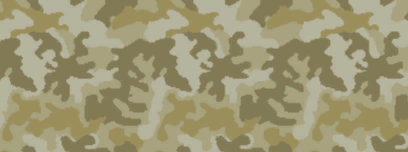 File:Weapon camo menu desert.png