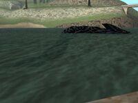 El Nessie en Fisher's Lagoon.