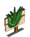 60px-Aloe_Vera_Mastery_Sign-icon.png