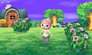 185px-Animal_Crossing_3DS_14.jpg