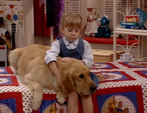 http://images3.wikia.nocookie.net/__cb20120912052960/fullhouse/images/5/57/The_devil_made_me_do_it.png